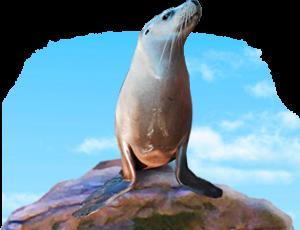 footer-seal